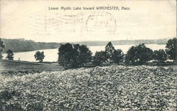 Lower Mystic Lake