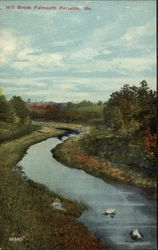 Mill Brook Foreside