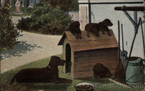 Dog and Four Puppies by a Doghouse in a Garden Dogs