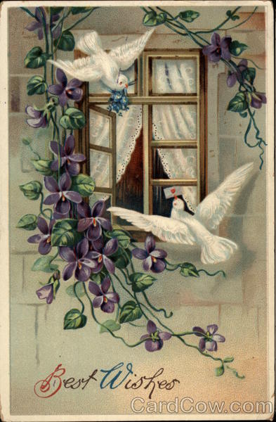 Best Wishes - Doves at Window Greetings