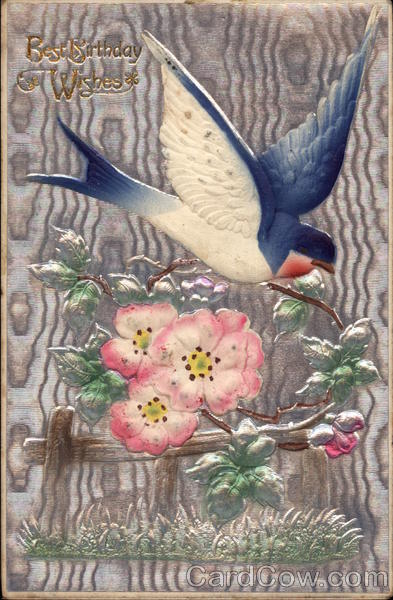 Birthday Wishes - Swallow and Apple Blossom Airbrushed