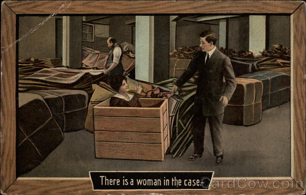 There is a Woman in the Case Comic, Funny