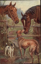 Two Dogs Sniffing at Two Brown Horses over a Fence