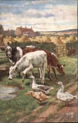 Farm Scene with Cows and Geese