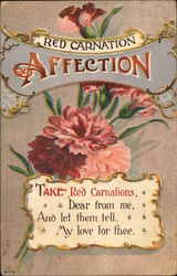 Red Carnation; Affection