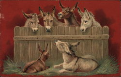 Five Donkeys and a Fence