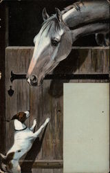 Horse in a stable looking at a dog