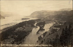 Columbia River from Crown Point Postcard