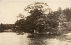 Boating on the Lake Postcard