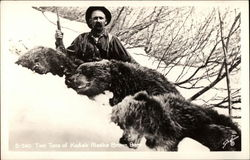 Two Tons of Kodiak Alaska Brown Bear