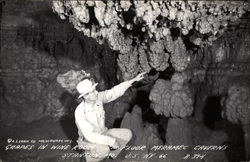 Grapes in Wine Room, 5th Floor, Meramac Caverns
