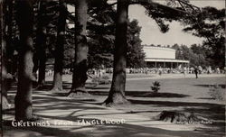 Greetings from Tanglewood