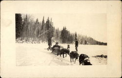 Men With Dogsled Team