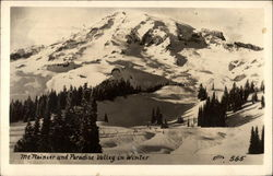 Mt. Rainier and Paradise Valley in Winter