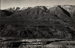 San Gorgonia Park and San Bernadino Peak