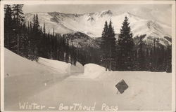 Berthoud Pass - Winter, Rocky Mountains Postcard