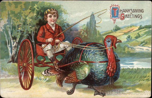 Boy Riding a Turkey Cart Postcard