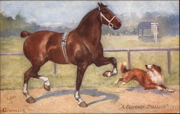 A Hackney Stallion and Dog Tuck's Oilette Series