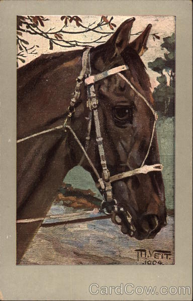 Horse with Harness M. Veit Horses