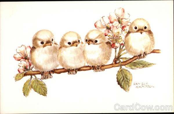 Four Baby Birds on a Branch 727