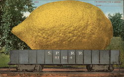 Giant Lemon on a Railway Truck