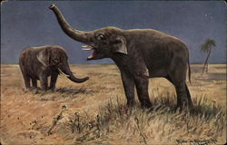 Two Elephants standing in Grassland