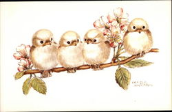 Four Baby Birds on a Branch