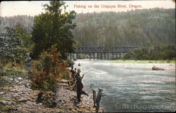 Fishing on the umpqua river oregon for Umpqua river fishing report