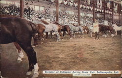 Interior of Coliseum during State Fair Postcard