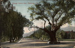Orange Grove Ave