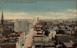 Bird's-Eye View of Louisville