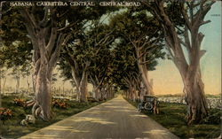 Carretera Central/Central Road Postcard