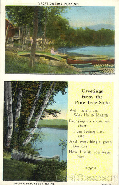 Greetings From The Pine Tree State Scenic Maine
