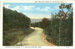 Wide And Easy Curves Of The Taconic Trail