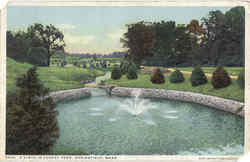 A Vista In Forest Park