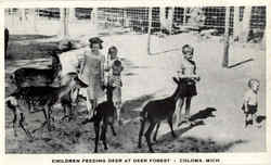 Children Feeding Deer At Deer Forest