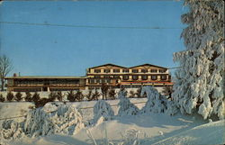 Chestnut Mountain Lodge Postcard