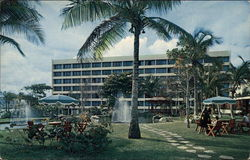 Caribe Hilton Hotel and Grounds