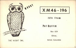 The Night Owl XM46-196