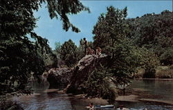 Swimming Area, Neall's Vacation Lodges Postcard