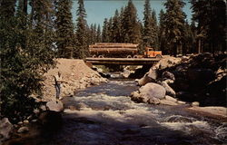 Logging Truck Crossing River in the Forest