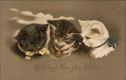 With Best New Year Wishes - Kittens