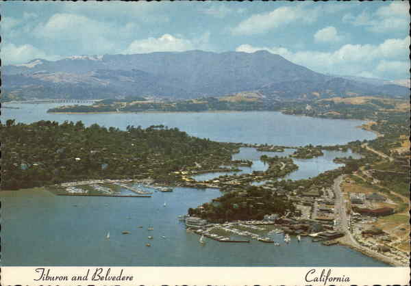 Aerial View of Tiburon and Belvedere California