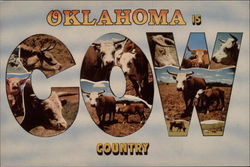 Oklahoma is Cow Country