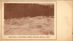 High Water In Wood River, February 1907