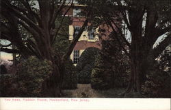 Yew Trees, Haddon House