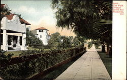 The Walk, Orange Grove Ave