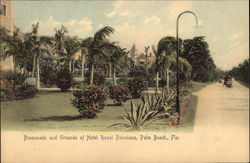 Promenade and Grounds of Hotel Royal Poinciana Postcard
