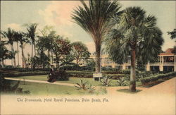 The Promenade, Hotel Royal Poinciana