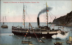 Arrival of Steamer